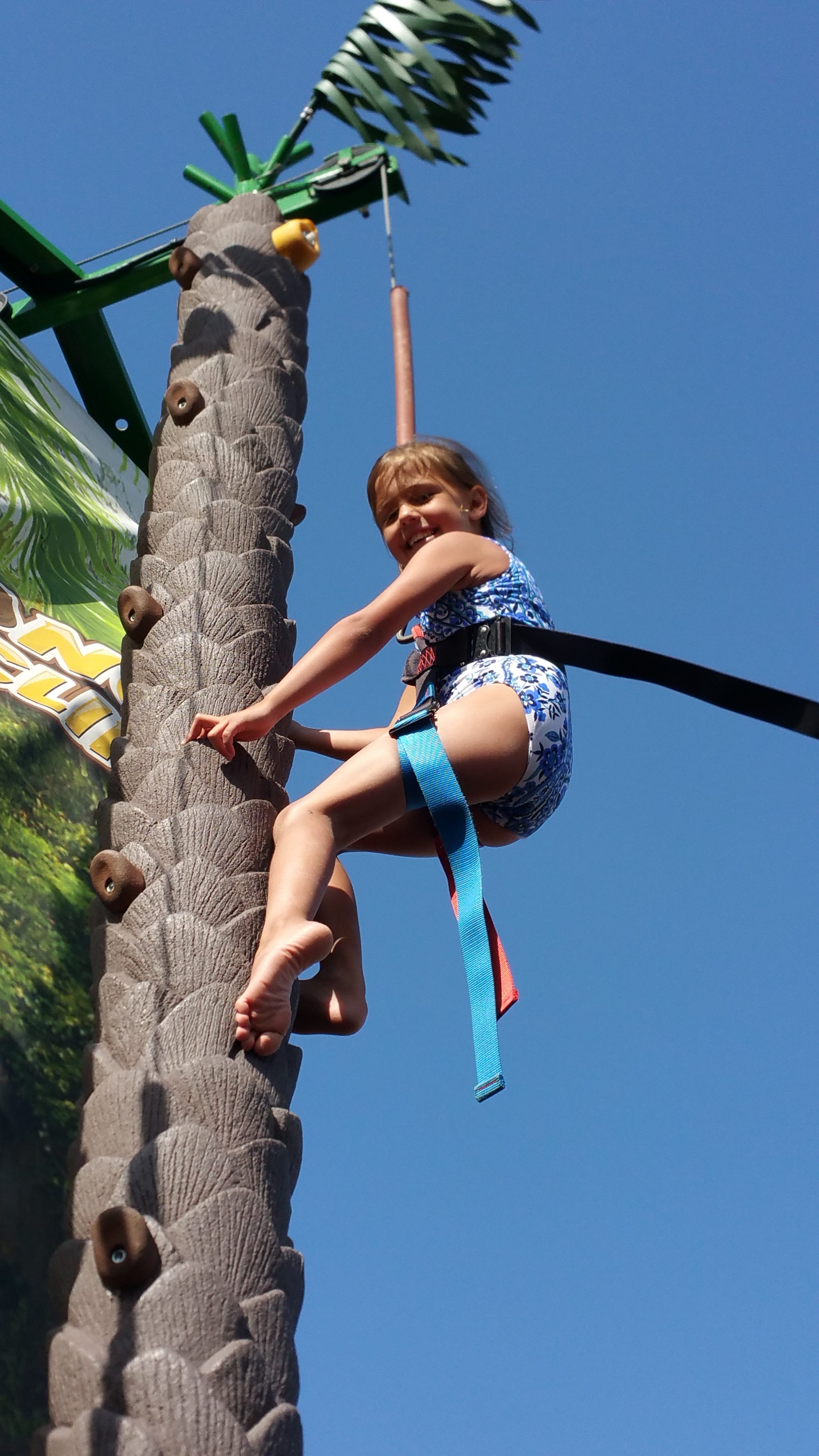 Top Line Auto >> Coconut Tree Climb – EMS Attractrions